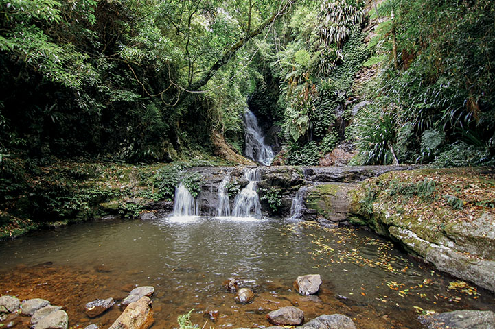 Chasing Waterfalls Lamington National Park Queensland